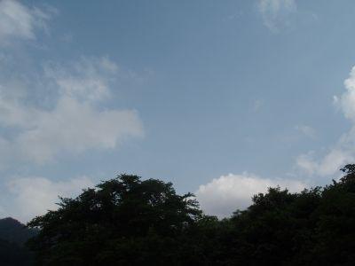 もうすぐ梅雨明け・・・