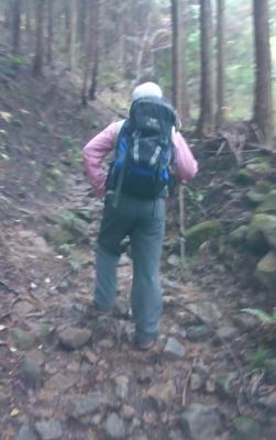 登り始めの足元はこんな感じ