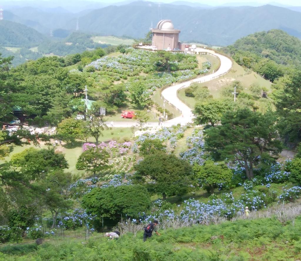 山頂からアジサイ園を望む