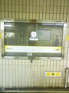 D1000019.jpg