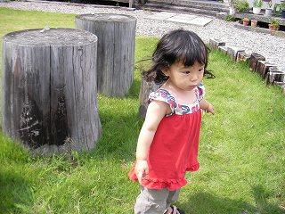 二葉@恵子の庭