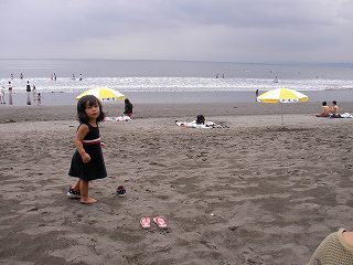 砂浜の二葉
