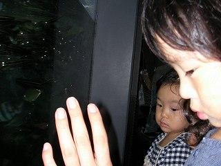 柚子と二葉@江ノ島水族館