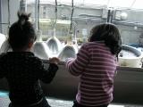 二人in水族館