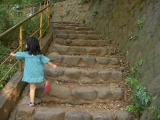 階段を上る二葉