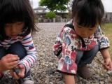 石広い姉妹