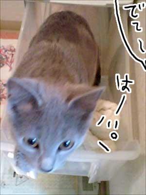 お風呂場02