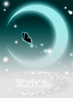 蝶々(青)