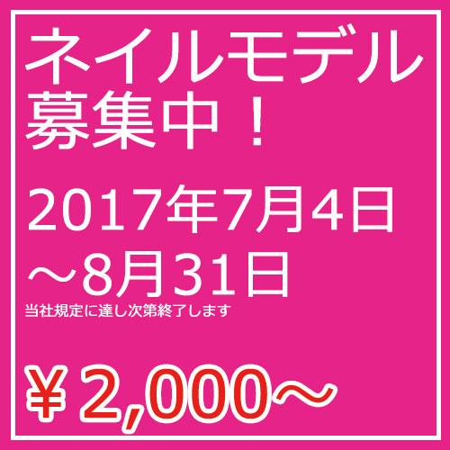 モデル2000.jpg