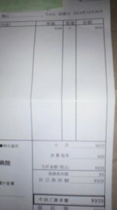 2014103123320001.jpg