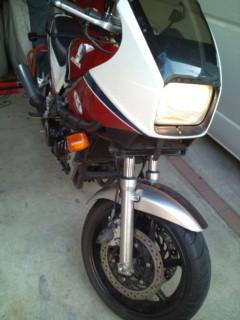 F1006141.jpg