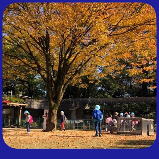 秋みつけ遠足