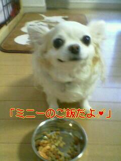 2010-03-16_17-37.jpg