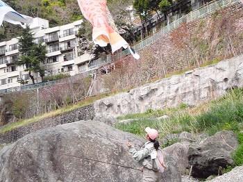 鯉をつる人