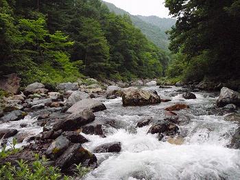 山岳渓流チック