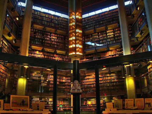 「ハリーポッター 本棚 高い」の画像検索結果