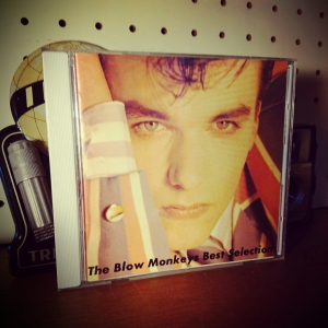 The Blow Monkeys - Best Selection