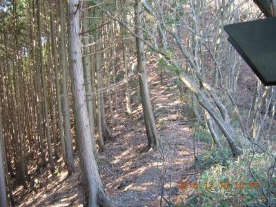 仙人ヶ岳への路