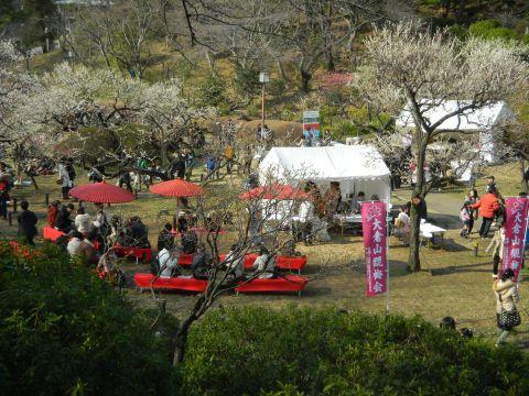 大倉山 観梅会2