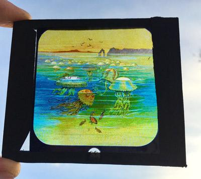海洋系ガラススライド