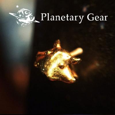 PlanetaryGear