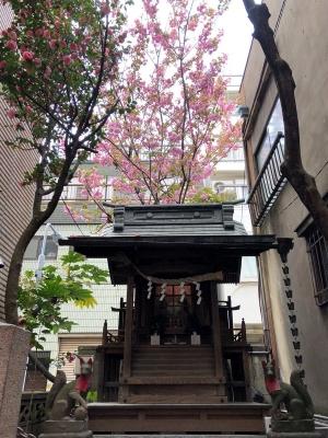 櫻稲荷神社