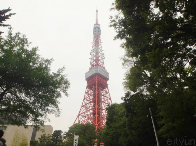 東京タワー1~WM.jpg