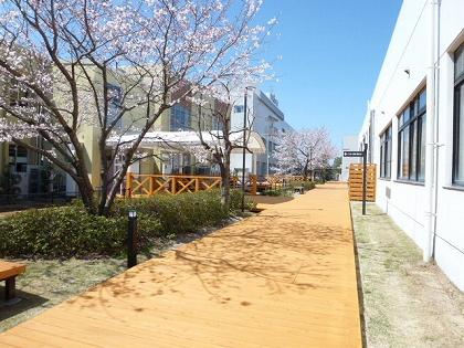 水辺の移動空間(大木町)