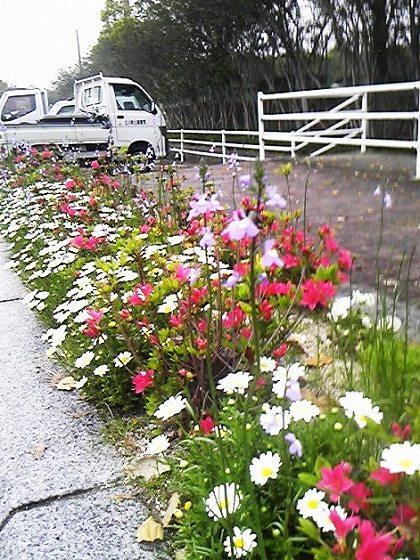 卯月の献花(広川町)