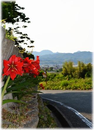 鍋底山2(広川町)