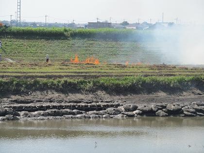 矢部川の野焼き風景