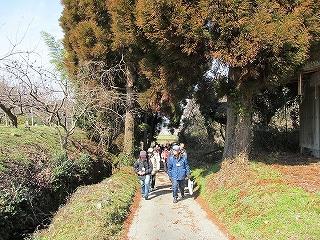 要川から薩摩街道を歩く