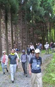 森林セラピー1
