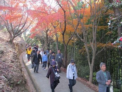 清水寺の紅葉歩