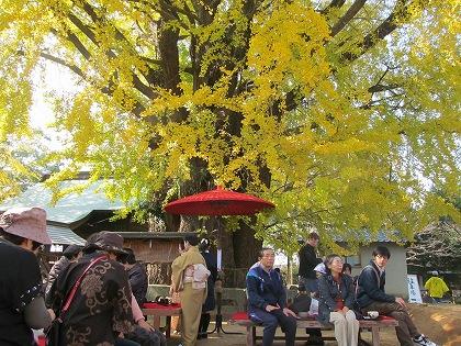 長田の大イチョウ祭り