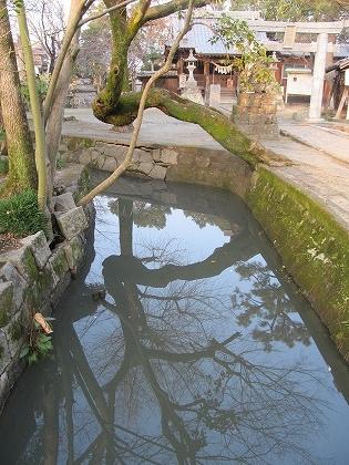 矢留大神宮水の構図