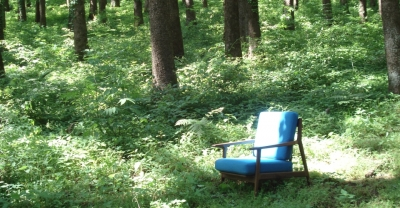 森のソファー