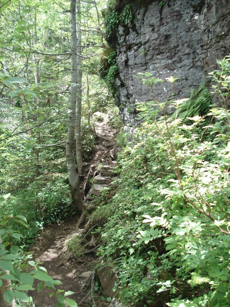 山道途中の大岩