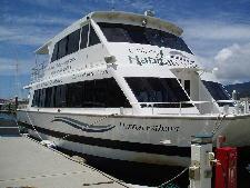 リバークルーズの船