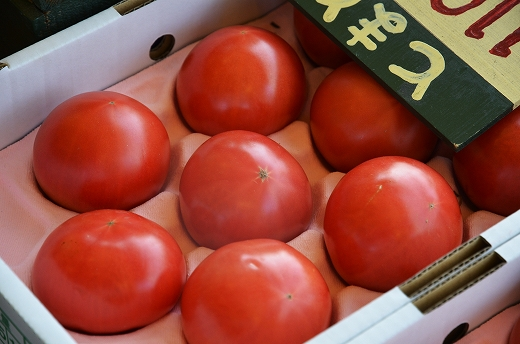 トマトファーム