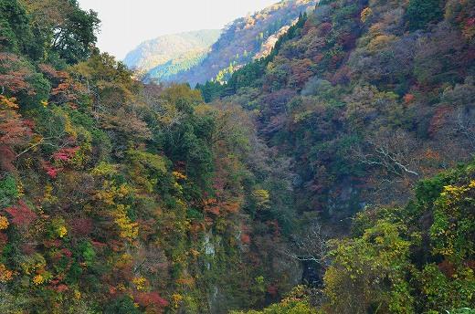 九酔渓の紅葉
