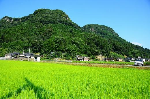 蛍茶園Tenjiku