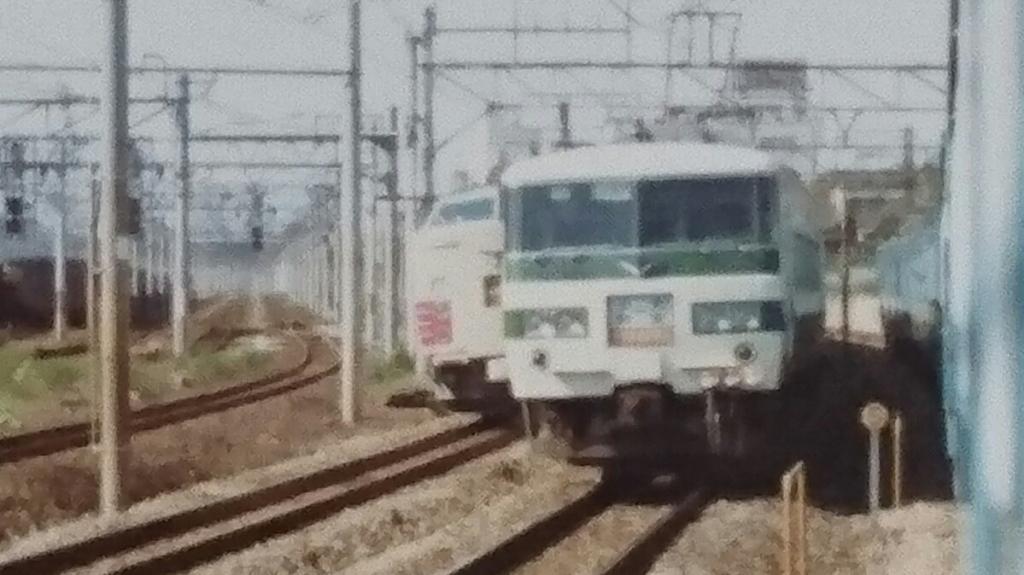 DSC_0516.JPG