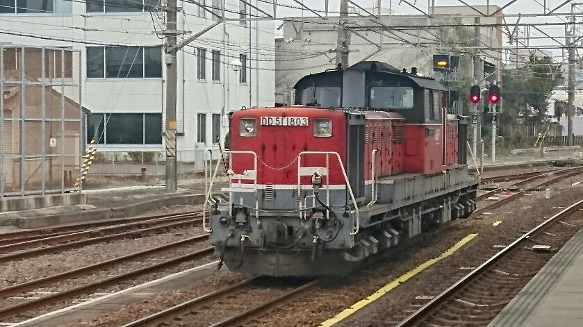 DSC_1060.JPG