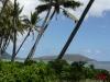 ハワイにて