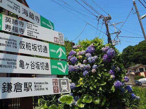 源氏山海蔵寺1.jpg