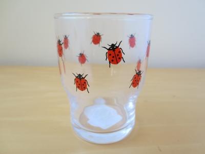 ケーファー グラス カップ てんとう虫