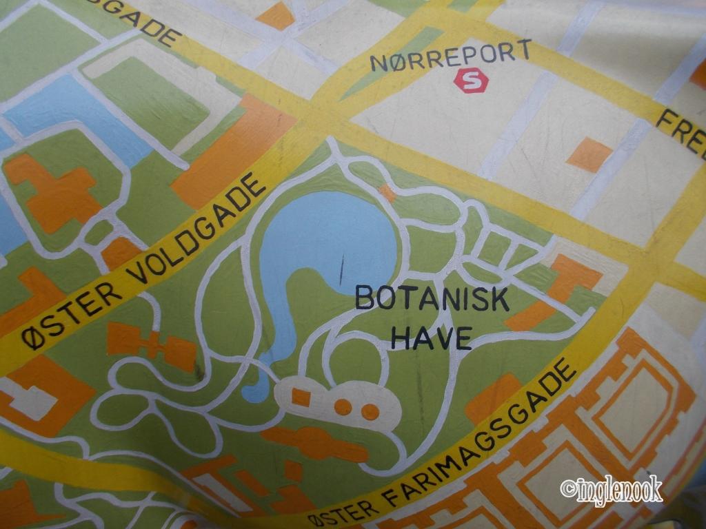 牛 コペンハーゲンの地図が描かれた