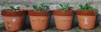 ステンシル植木鉢