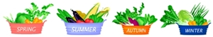 野菜のライン1